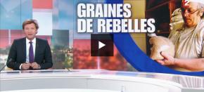 [FR] A voir ! Graines de rebelles surFR2