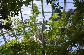 [EN] Le Jardin desPlantes